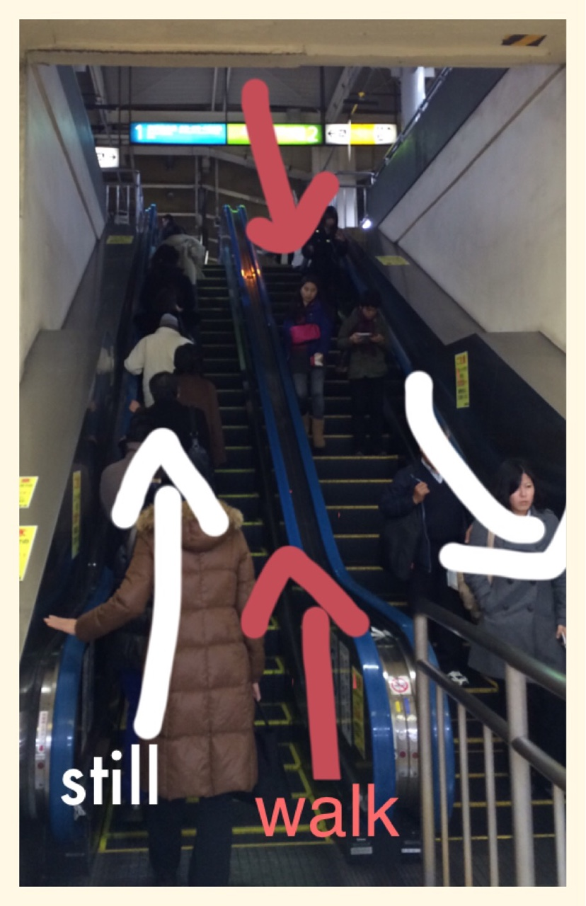 Tokyo escalator etiquette.   If you gotta time or no energy, use the left side of it and stand still. If you are in hurry or too much energy, use the right side to walk up. Don't just stand on right side or try to walk up in left side. I never learned this but everyone knows. Also, be careful in osaka, the west side of Japan, it's the opposite side. Do it right, and sink in.