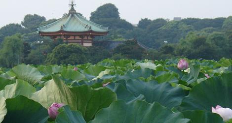 ueno_park_4.jpg