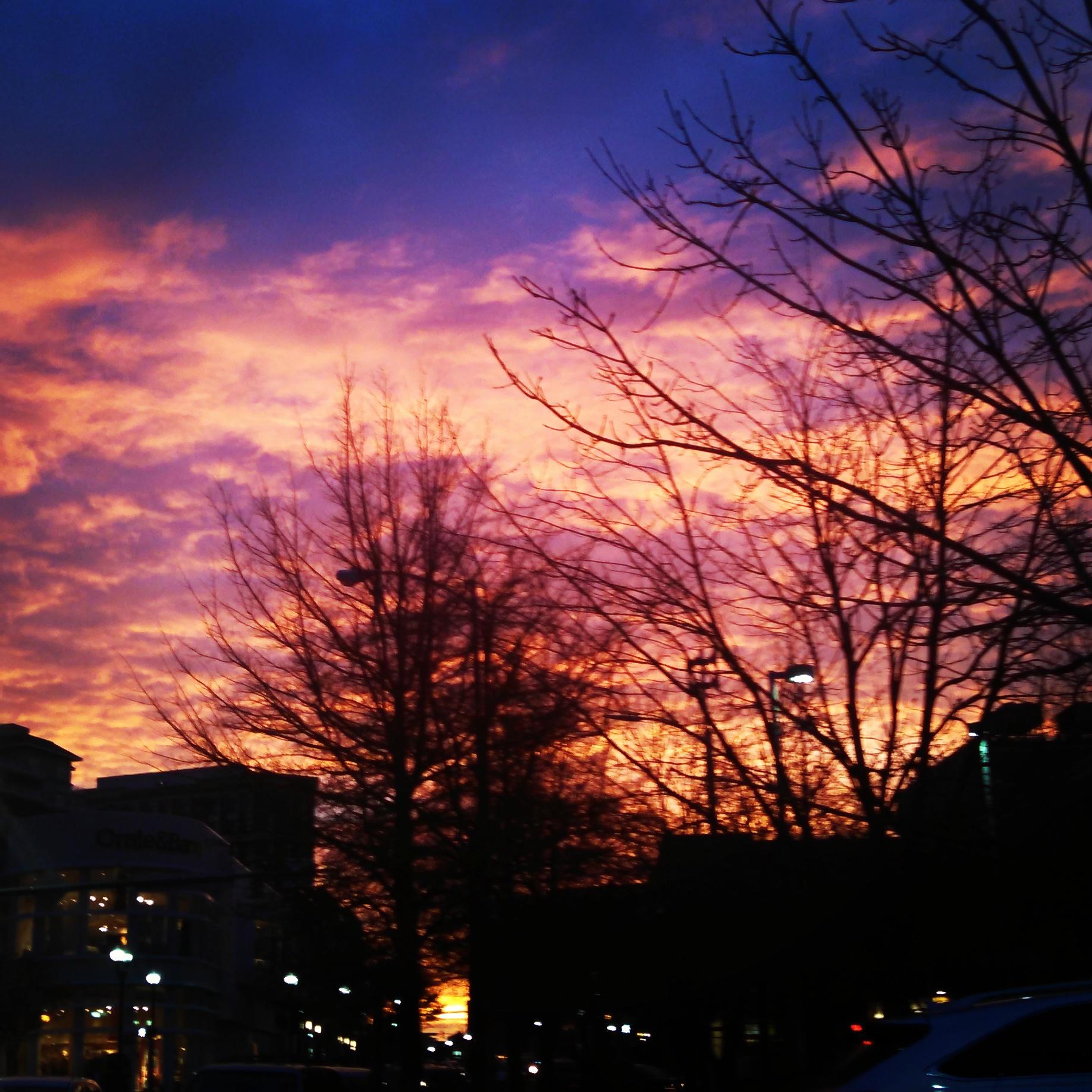 One magical evening in my neighborhood.