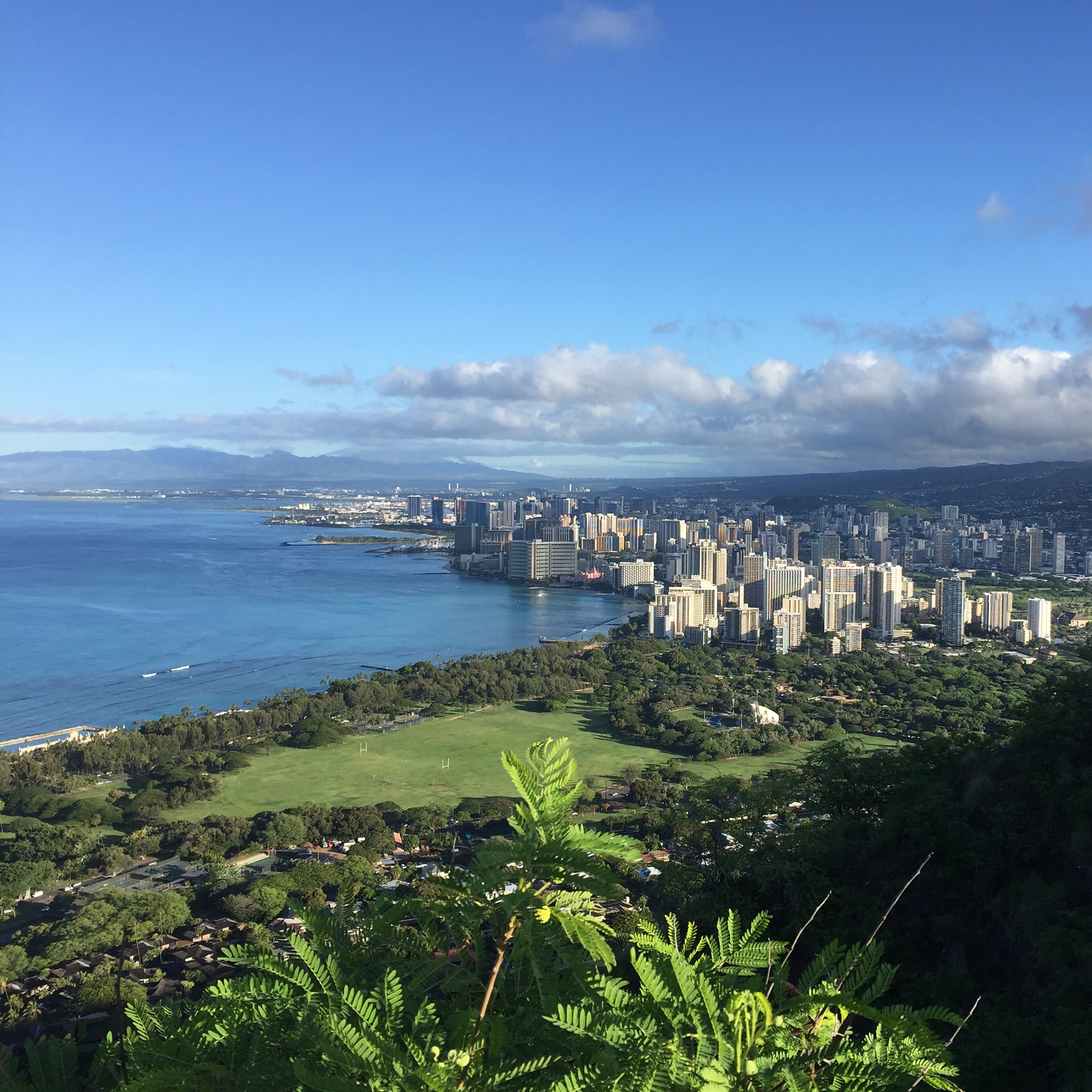 My Core Desired Feelings are Vitality, Connection, Brilliance, and Wonder. I took this photo at Diamond Head in Hawaii after an early-morning hike to the top with two brilliant friends. It's rare to go 4 for 4! And I reaped the Motivation rewards for the rest of the day.