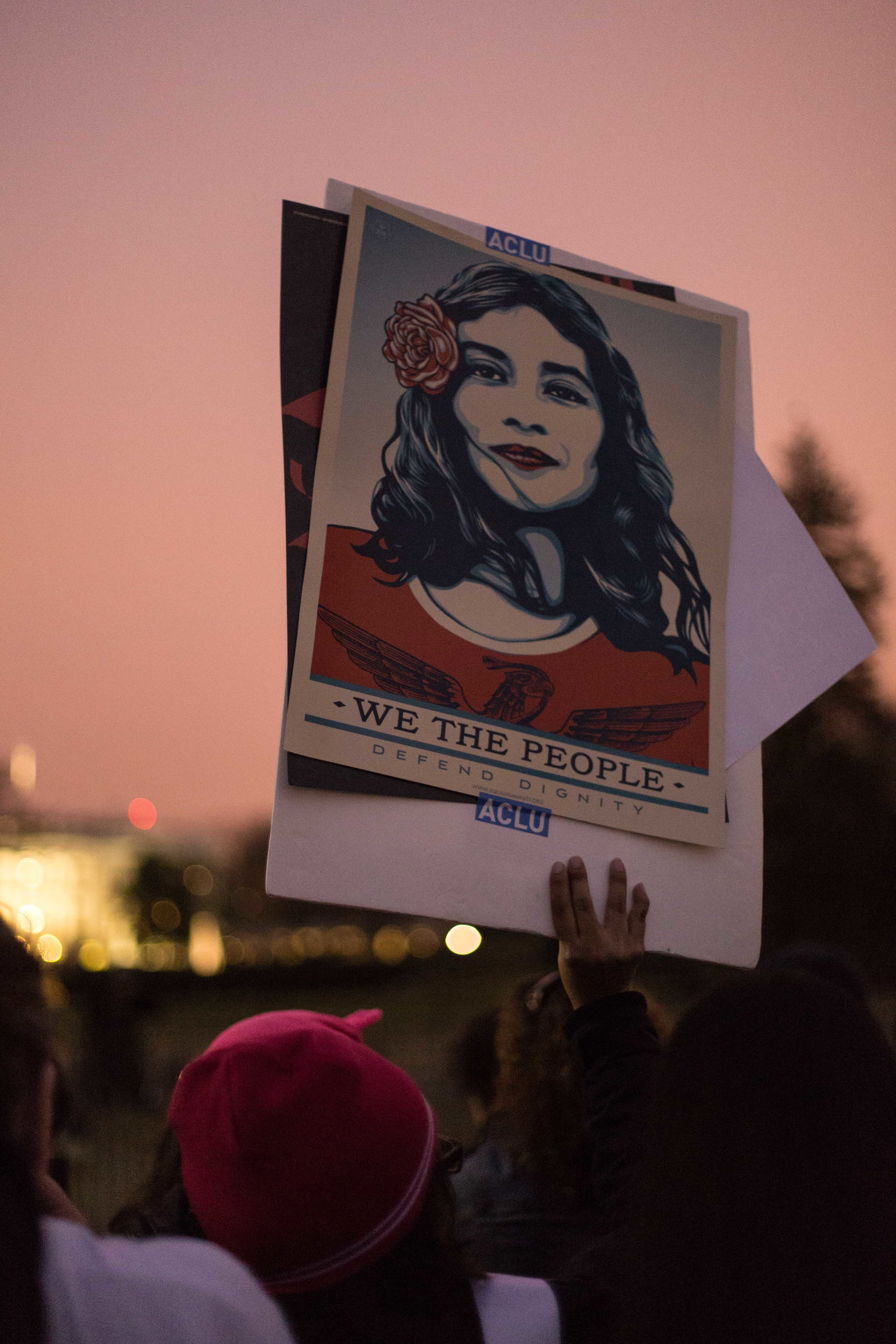 One of Shepard Fairey's signs -  which was written about extensively prior to the march .
