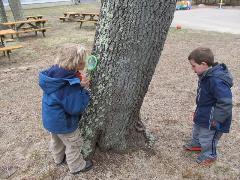 Outdoor activities provide opportunities for environmental education and an introduction to the wonders of science.