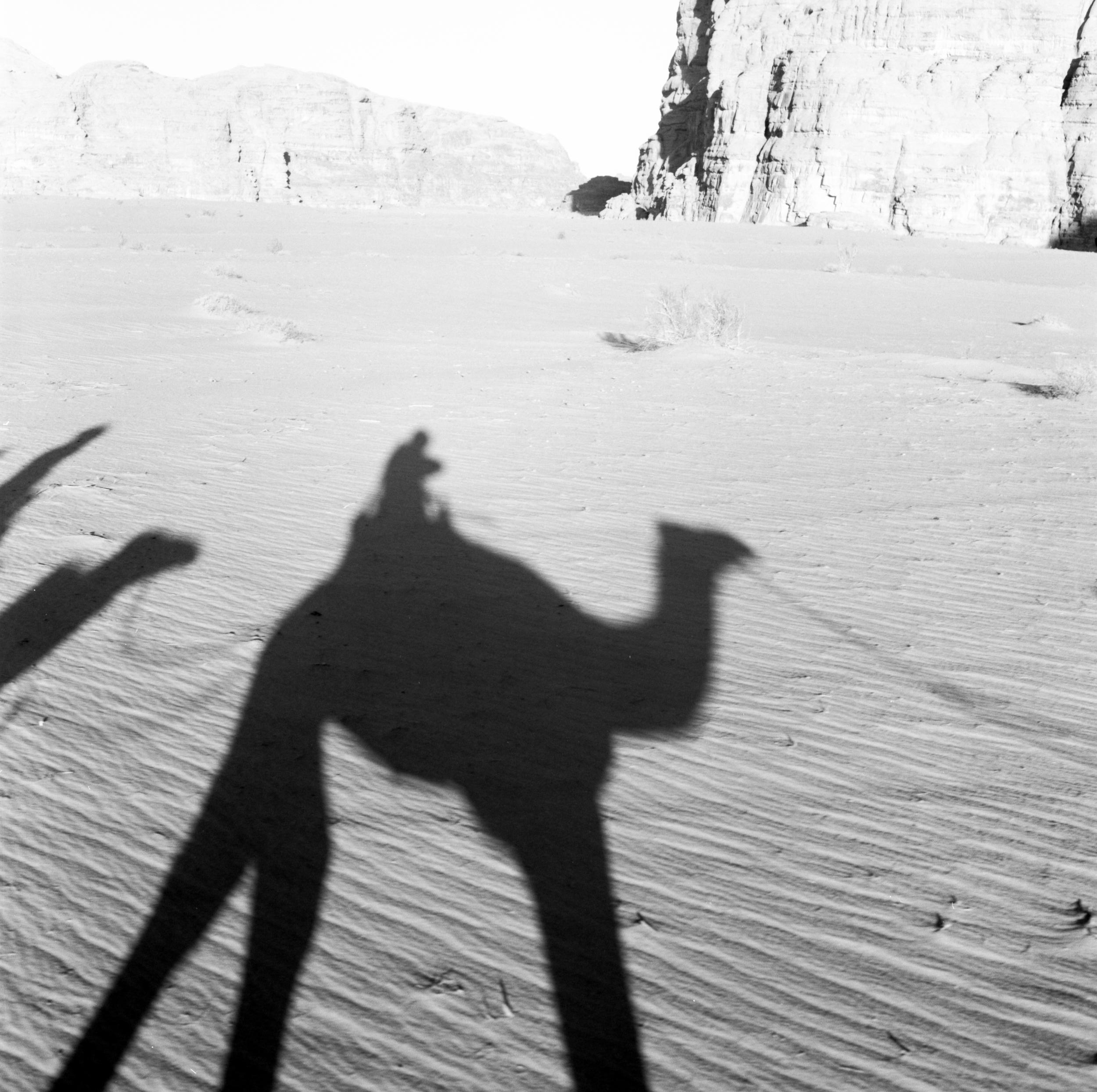 Camel Ride Hasselblad 501c | Fuji Acros