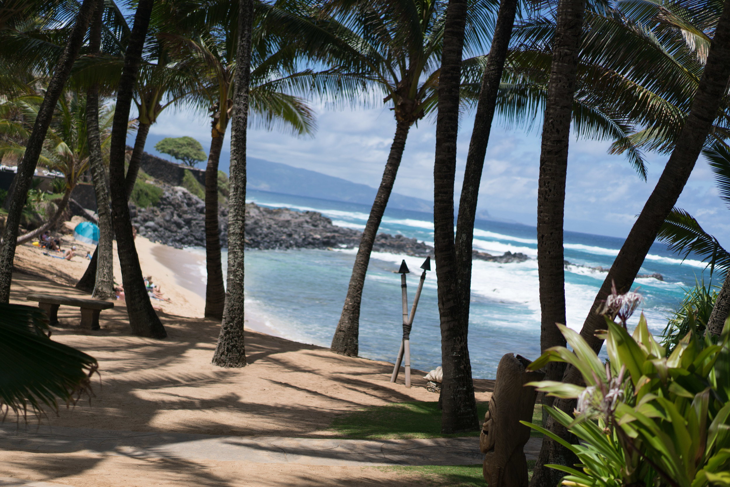 Maui-121.jpg