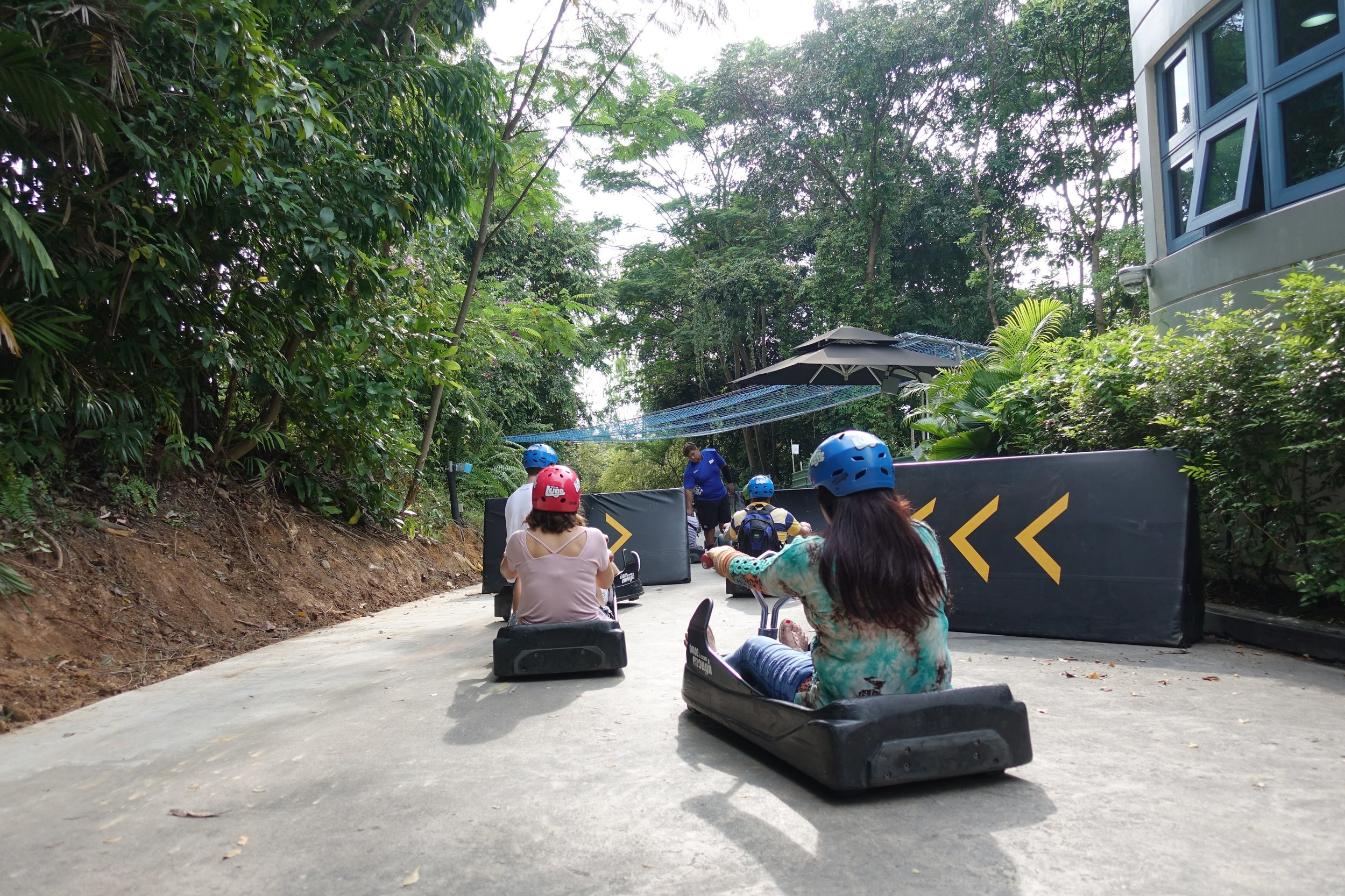 Getting ready to take the luge down!