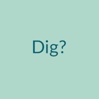 dig.png