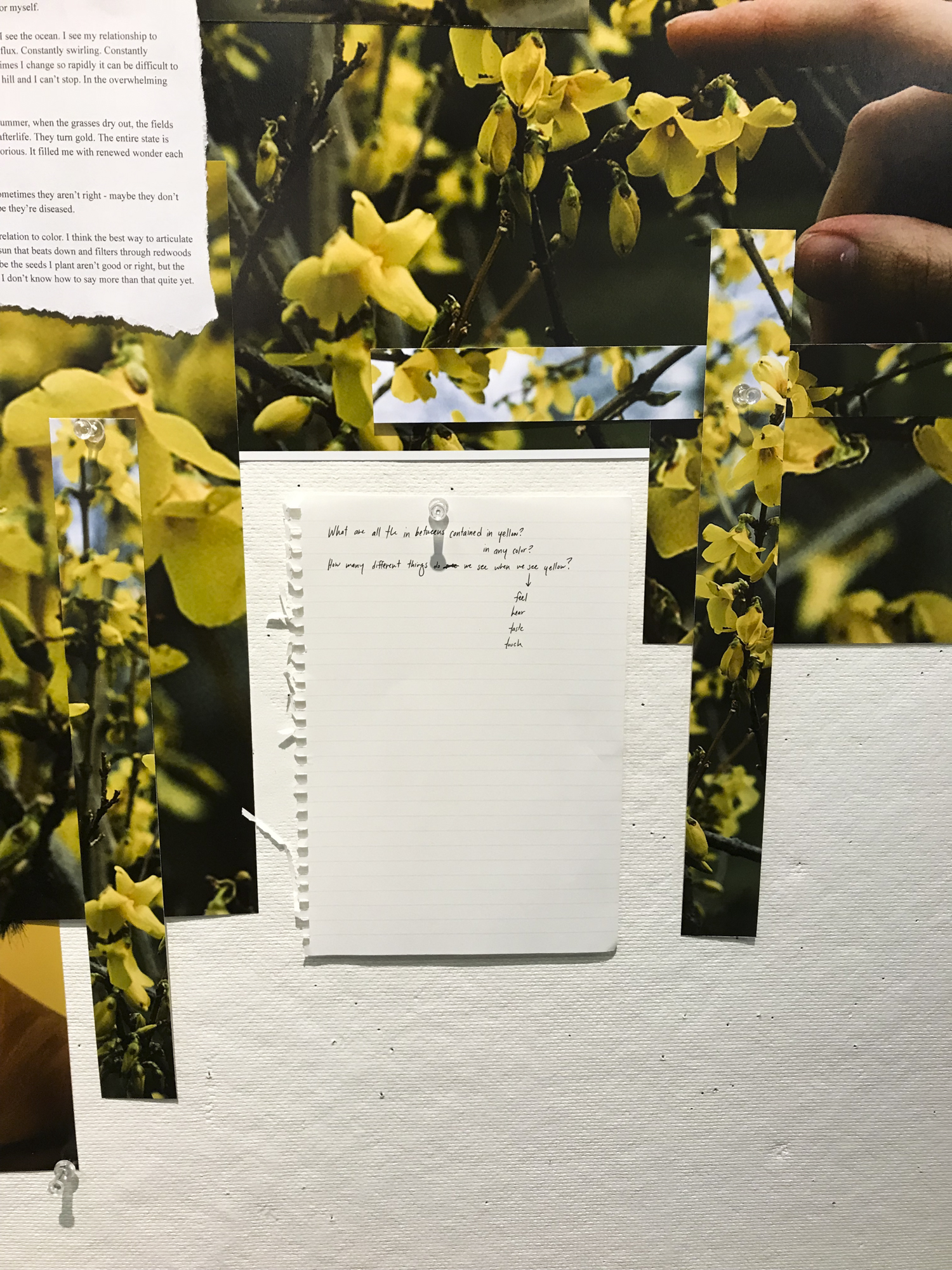 Detail of  On Being: Yellow, 2018