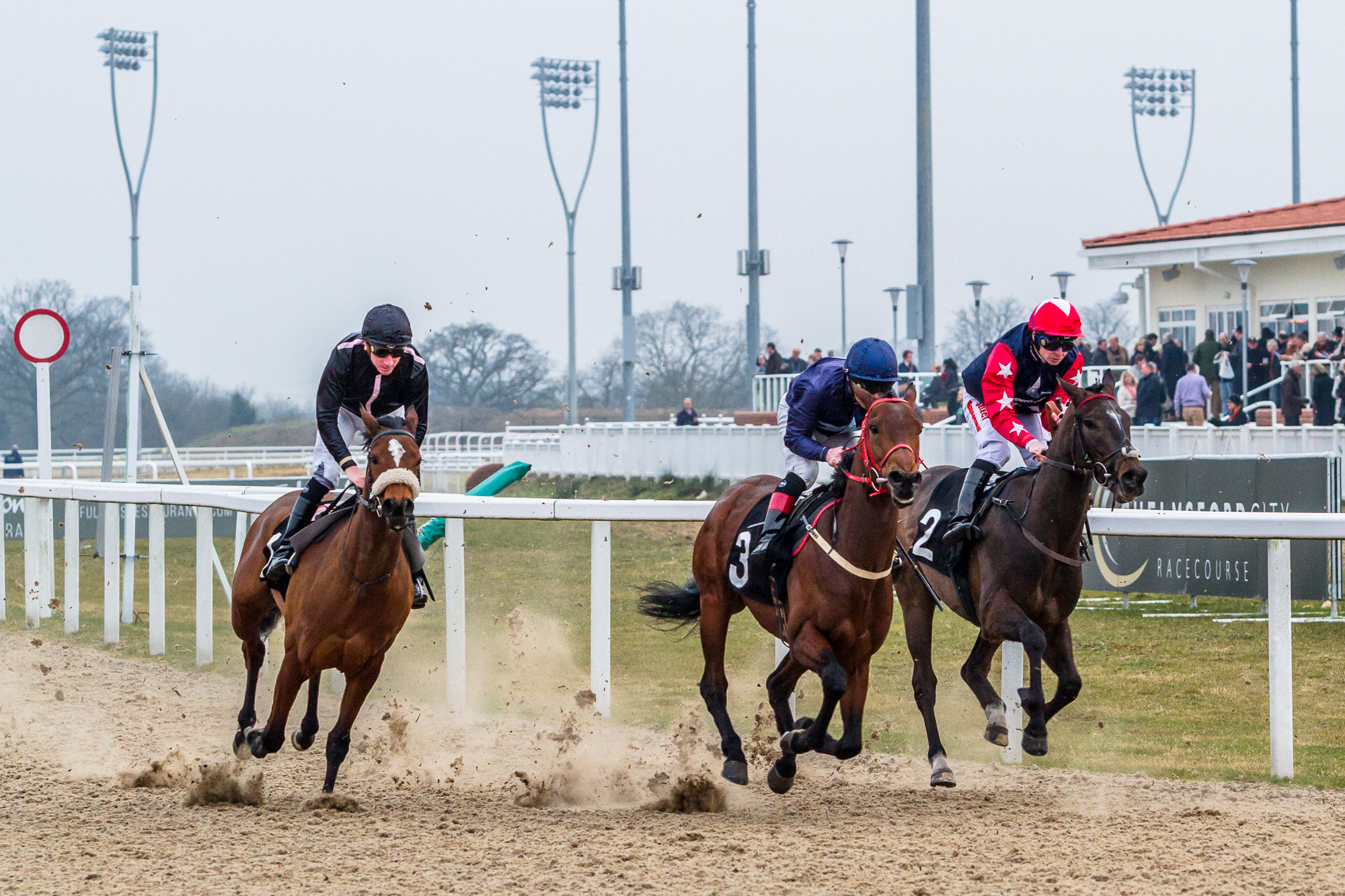 Chelmsford-city-racecourse (1 of 1)