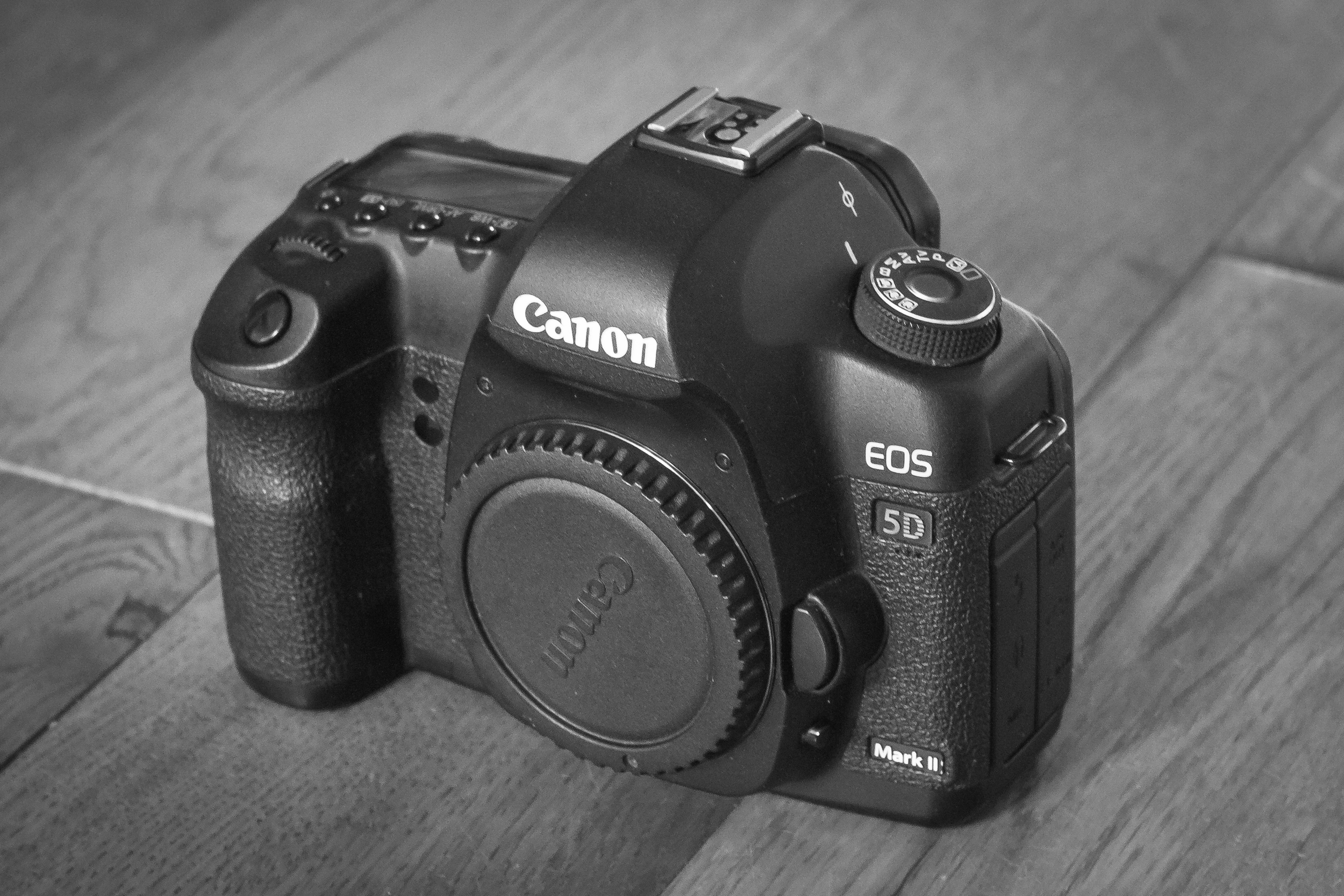 My Canon Eos 5D Mark ii - a little worn on the surface but always works a treat!