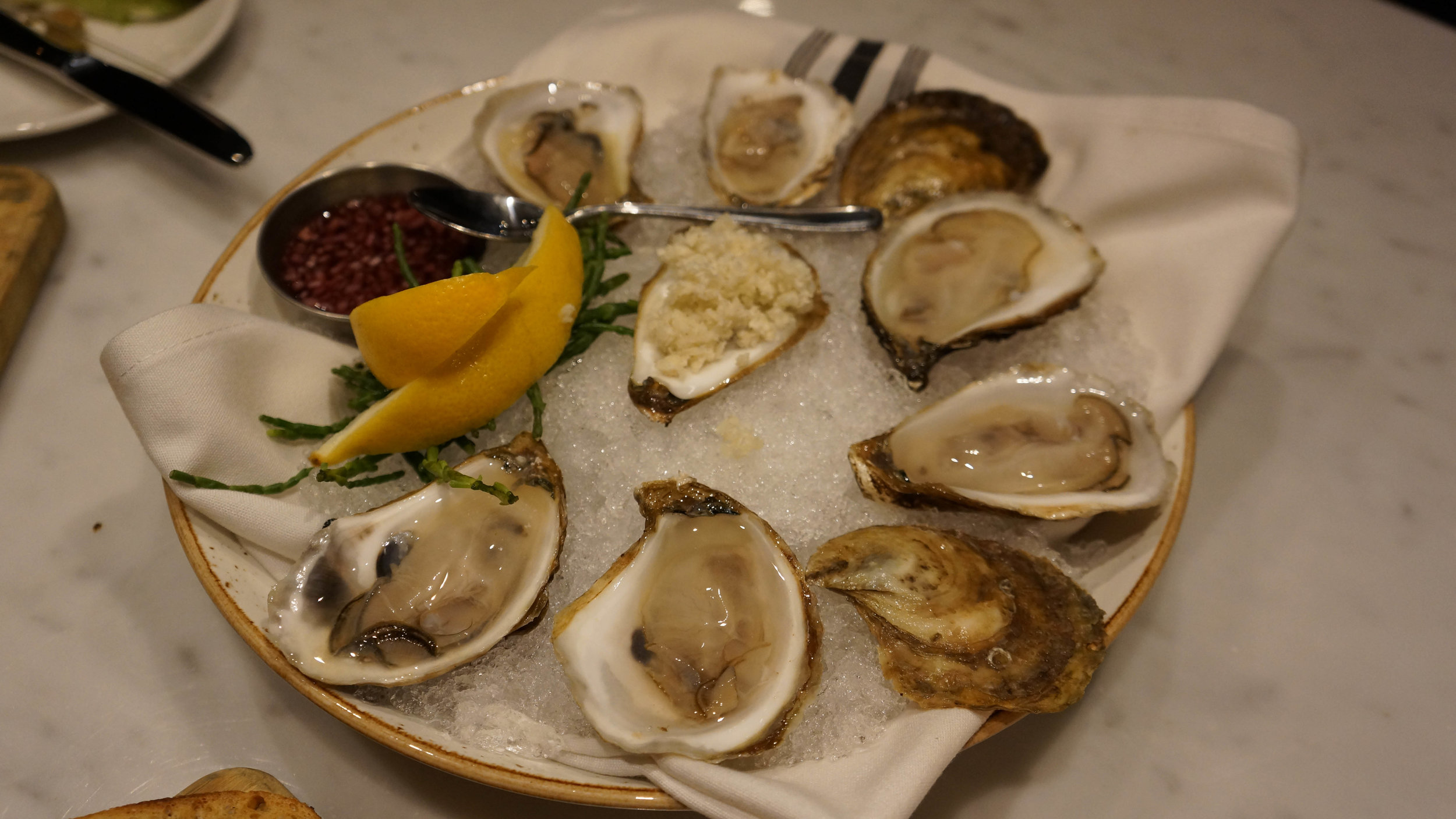Oysters at Maggie Oakes