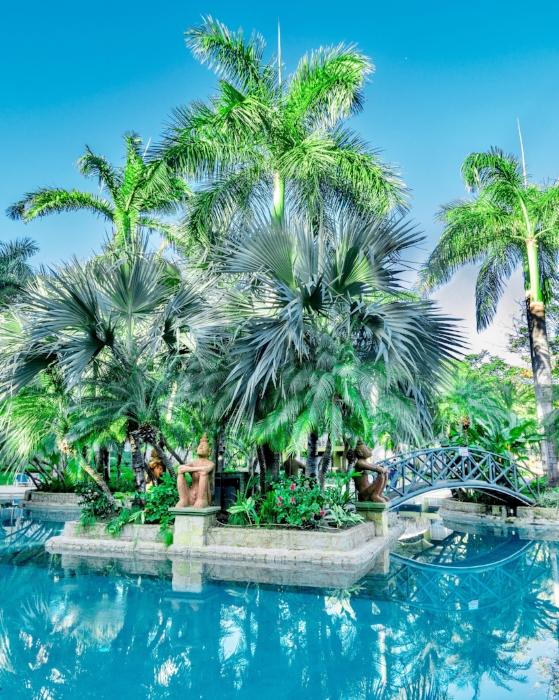 Hotel Tamarindo Diria - Lagoon Village