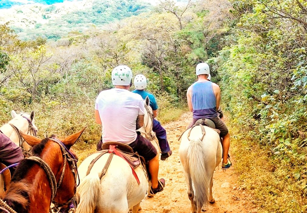 Horesback Riding - Bueno Vista, Costa Rica - Sunwing Experience