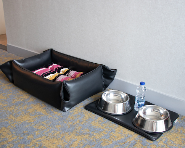 Dog Bed and Bowls