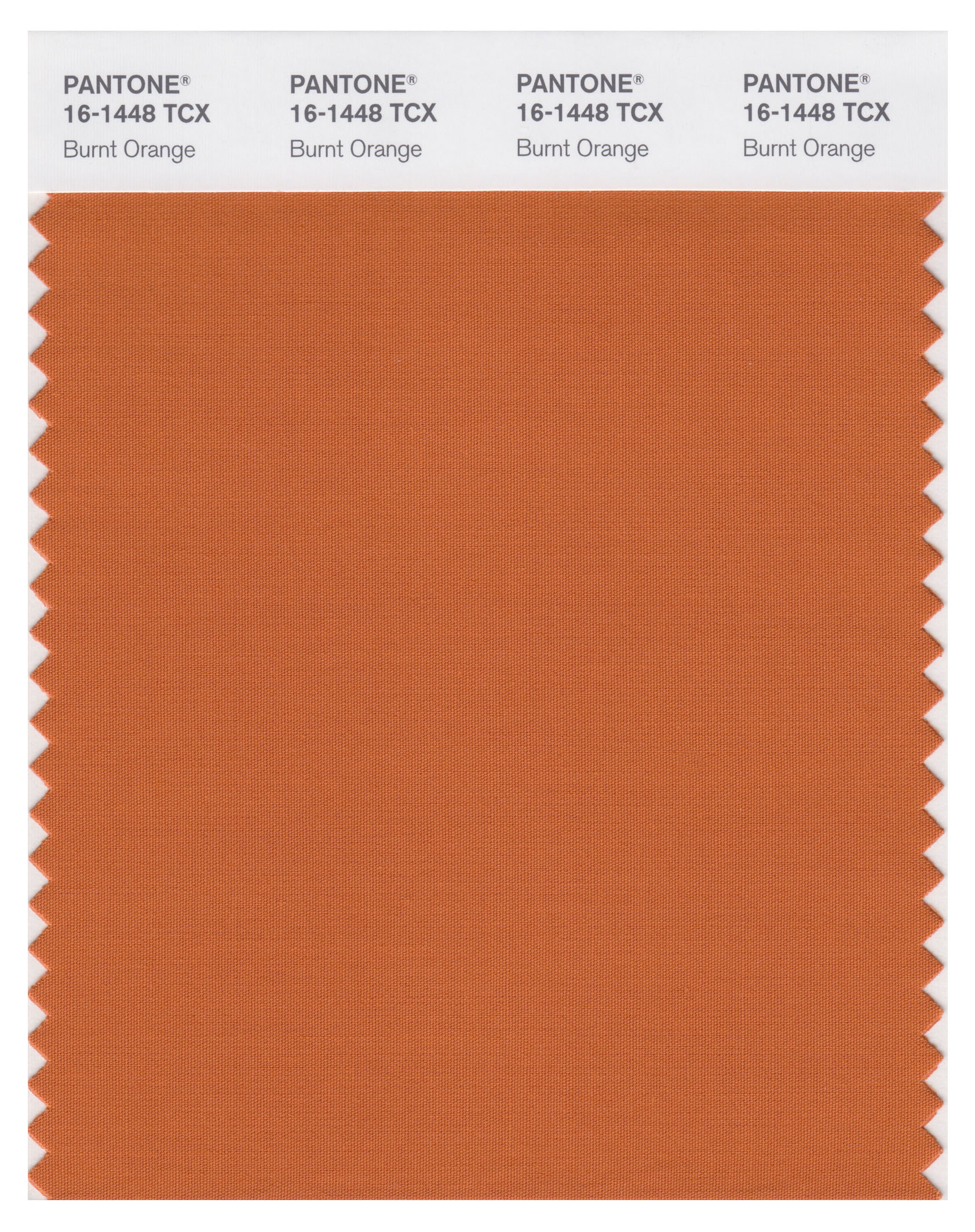 1- Burnt Orange.jpg