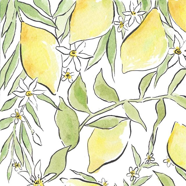 Summer lemons 🍋🌿 • • • #wedding #weddingplanning #events #eventplanner #bridal #partyplanning #eventdesign #ink #penandink #illustrator #illustration #artist #sketchbook #penandink #instaart #artwork #draw #initial #monogram #oranges #artoftheday #prints #onmydesk #artist #etsy #etsyshop #etsyseller #watercolour