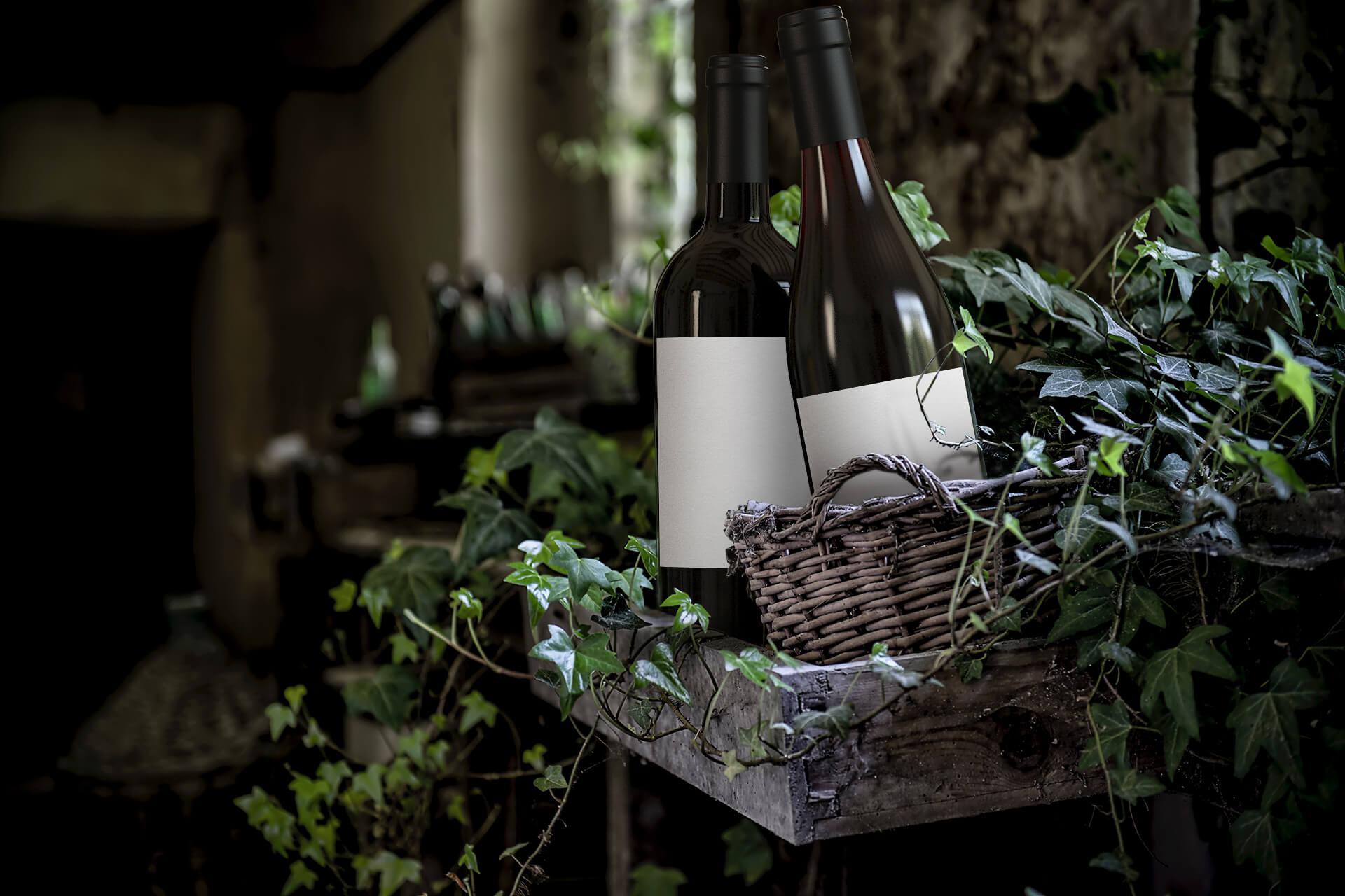 Overgrown vines
