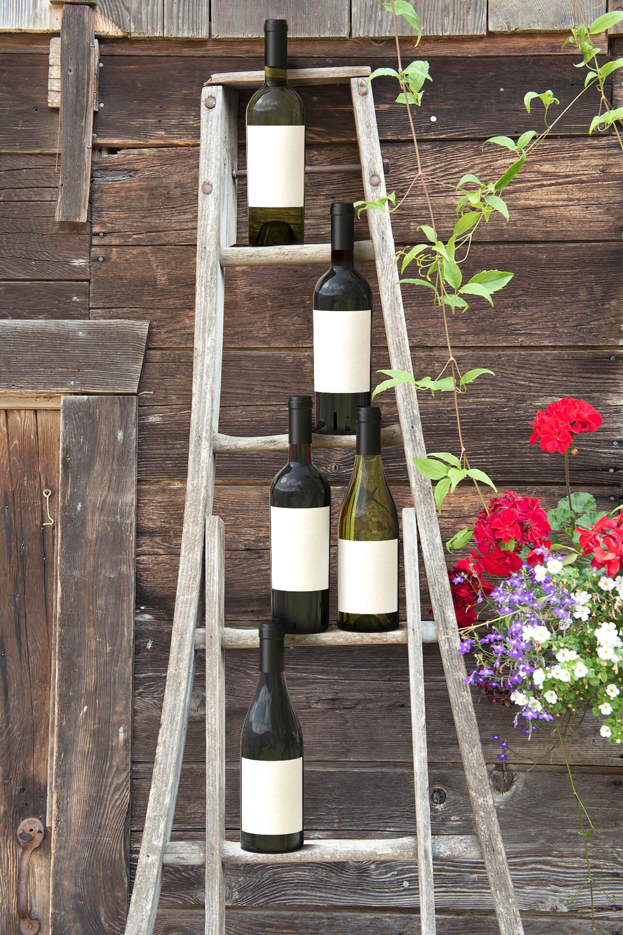 Farm ladder