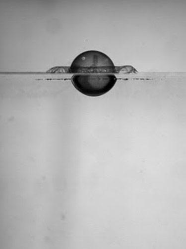 54caa9eb2d987_-_splash_physics_03_0710-lg.jpg