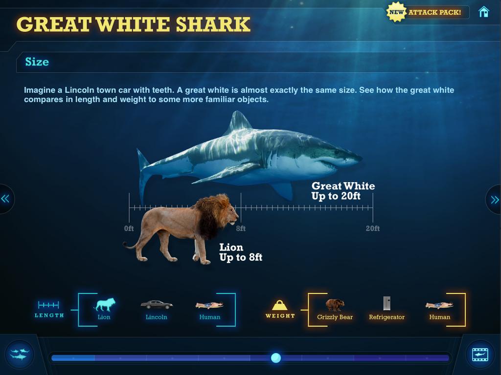 SharksComparison.jpg