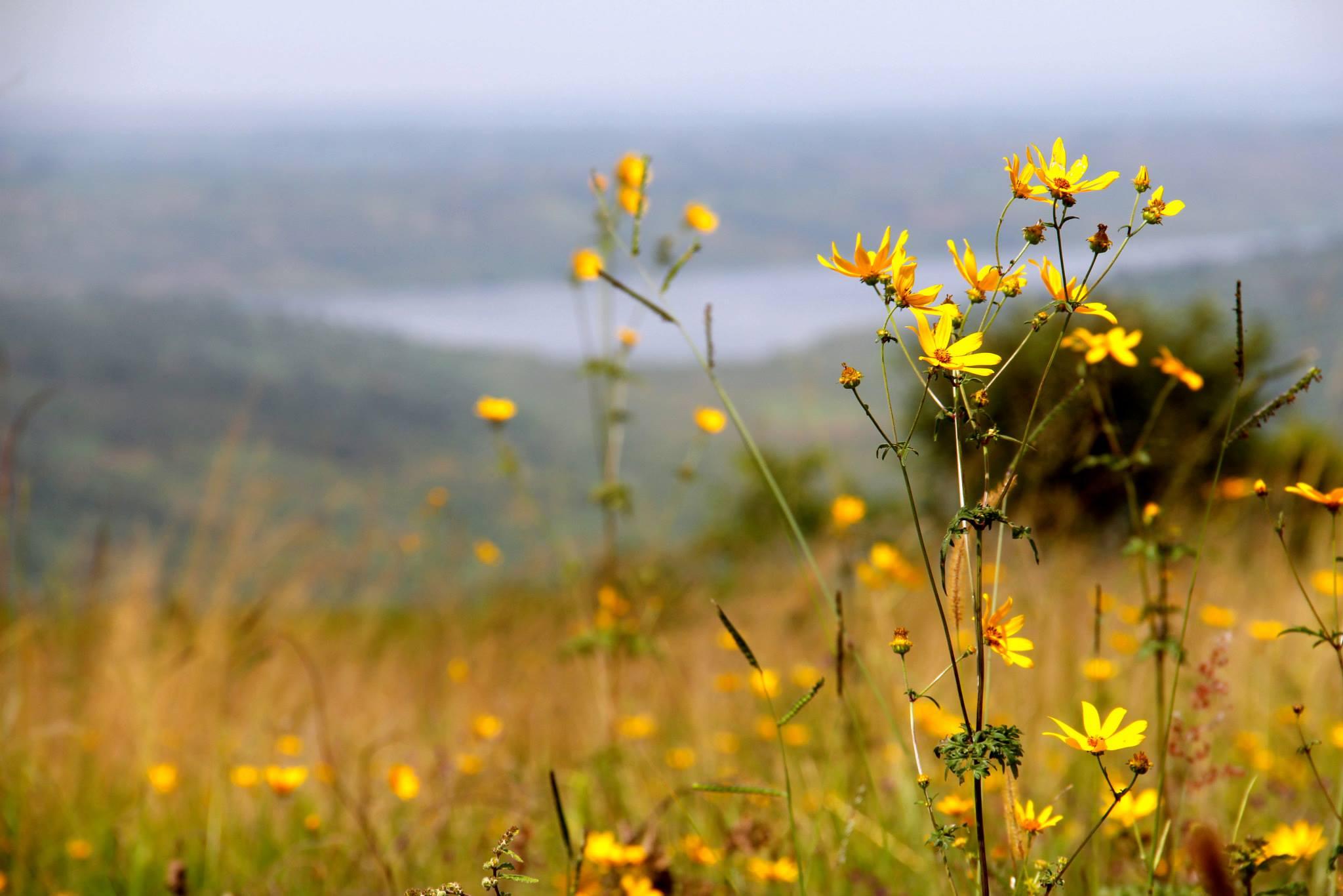 Akagara National Park, Rwanda
