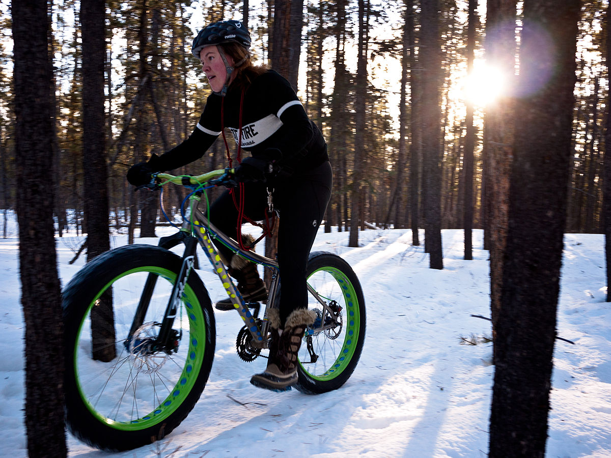 1200px-Fat_bike.jpg