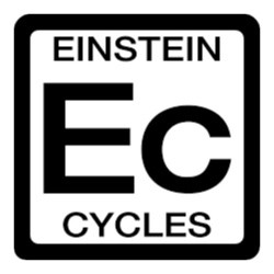 eistein website.jpg
