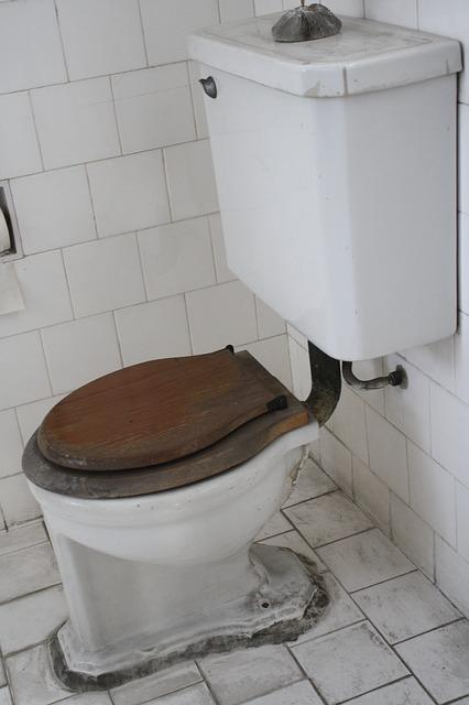 Dirty-Bathroom Diseases
