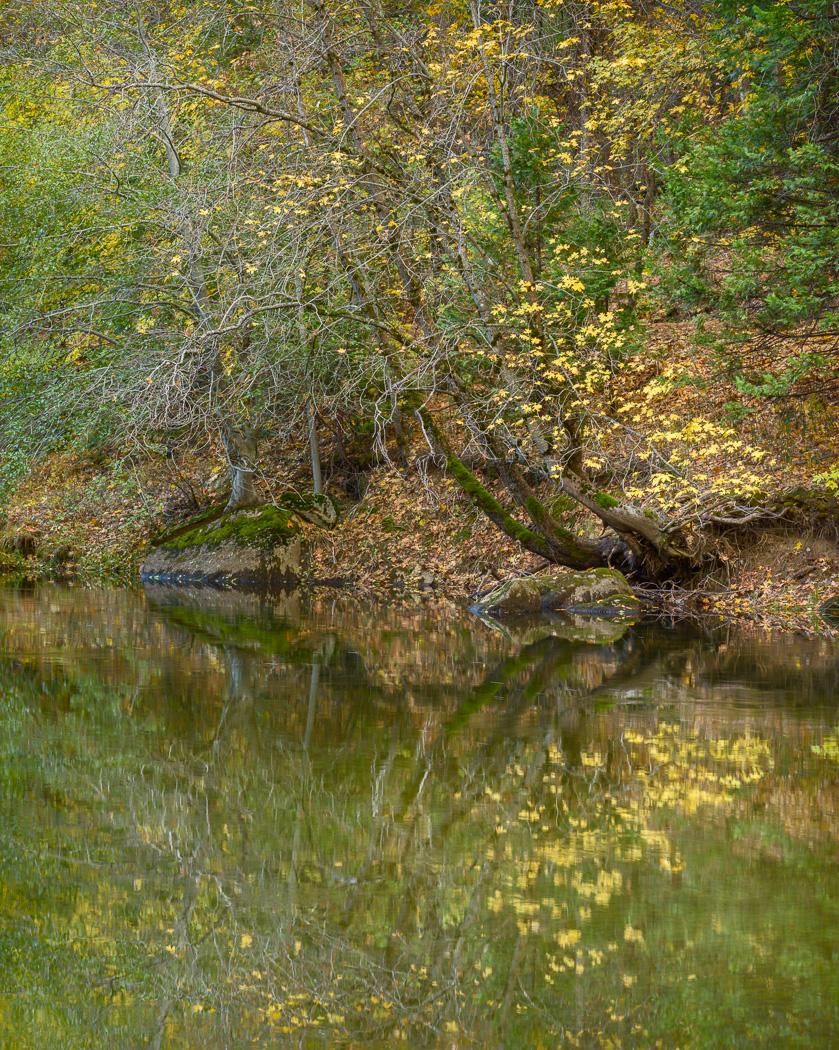 Yosemite-River.jpg