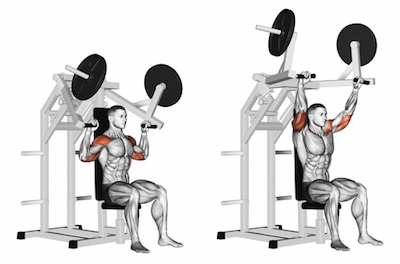 Image result for Machine Shoulder Press