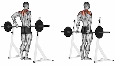 Standing Rear Barbell Shrugs