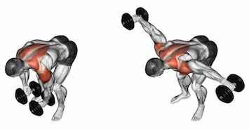 Standing Bent Over Lateral Raises