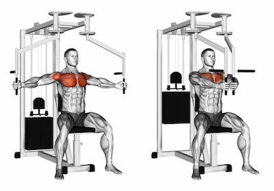 Seated Pec Fly Machine