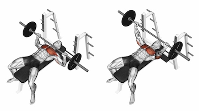 Flat Barbell Chest Press