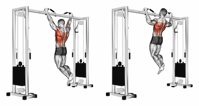 Wide Grip Overhand Chin Ups