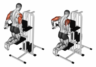 Assisted Triceps Dips.