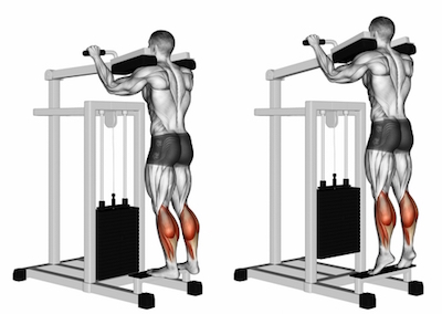 Standing Calf Raises Machine