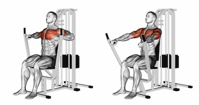 Seated Machine Chest Press