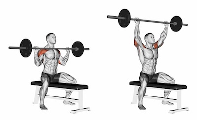 Seated Overhead Barbell Press