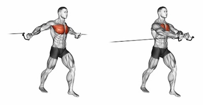 Middle Cable Pec Fly