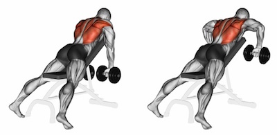Incline Bench Dumbbell Rows