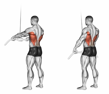 Standing Cable Bar Lat Pushdown