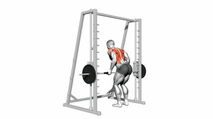 Underhand Grip Smith Machine Bent Over Rows
