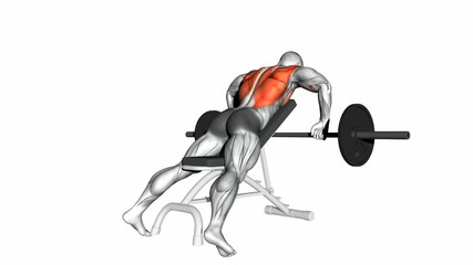 Incline Bench Barbell Rows