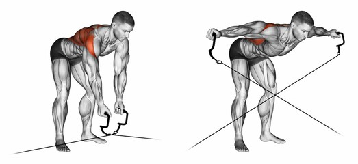 Standing Cable Bent Over Lateral Raises
