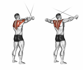 Standing Cable Rear Delt Fly