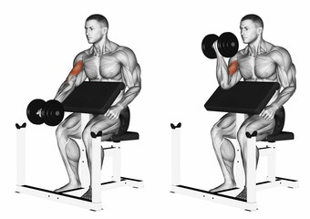 One Arm Dumbbell Biceps Preacher Curl