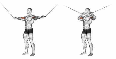 Overhead Biceps Cable Curl