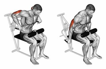 Triceps Dips Machine