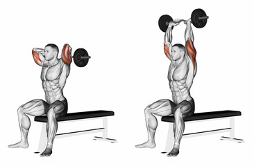 Seated Overhead Triceps Extension
