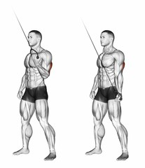Standing One Arm Tricep Pushdowns (Reverse Grip)